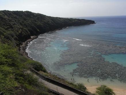 ハワイ 144.JPG